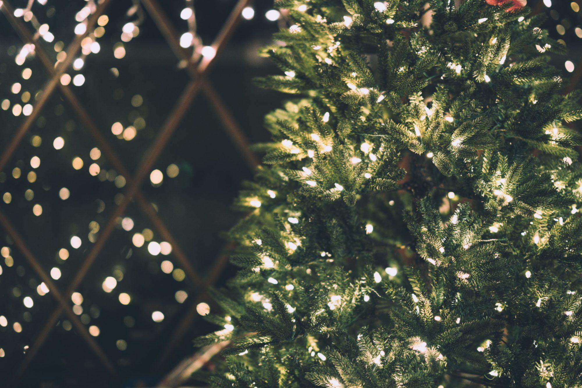 Weihnachtsgarten Schwaikheim
